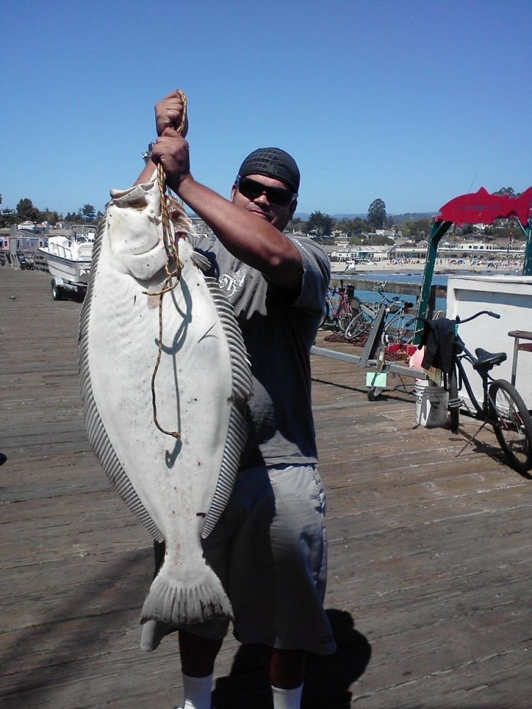 30 pound halibut